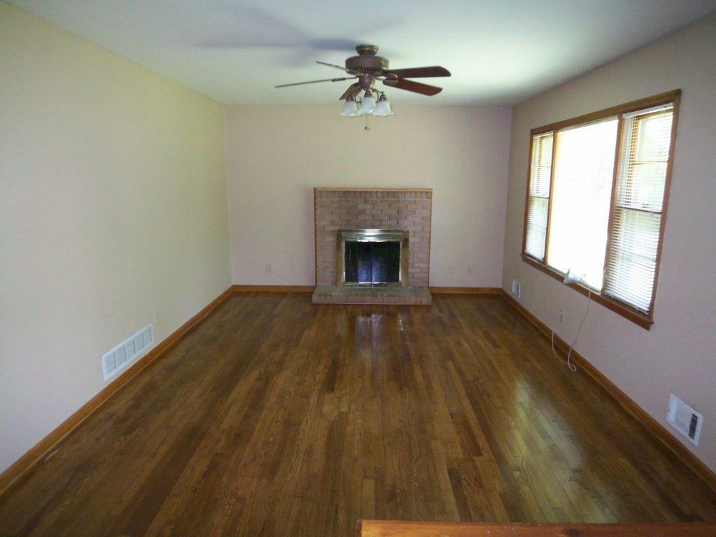 mays livingroom fireplace