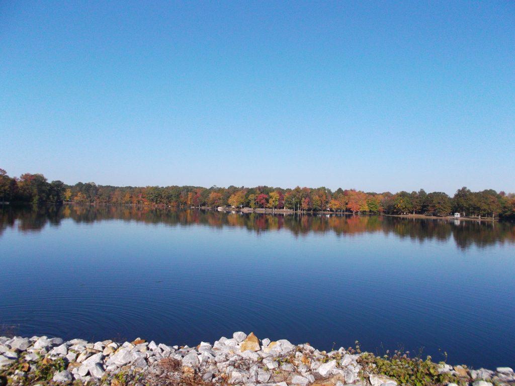 Lake Cindy
